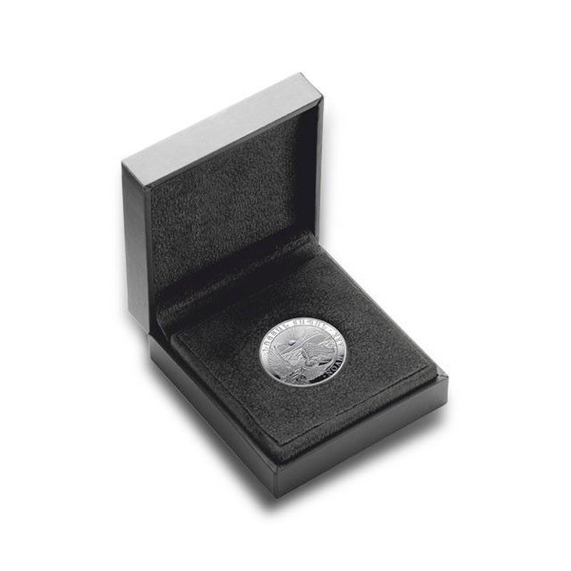 Memory Foam Case for Coins